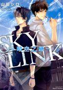 SKY LINK~晴空之戀~