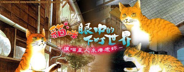 愛貓控別錯過!透過貓咪的視野來看下町人情物語,別有另一番滋味呢!